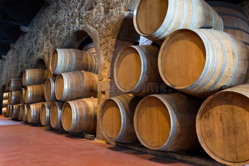 木葡萄酒桶 库存图片