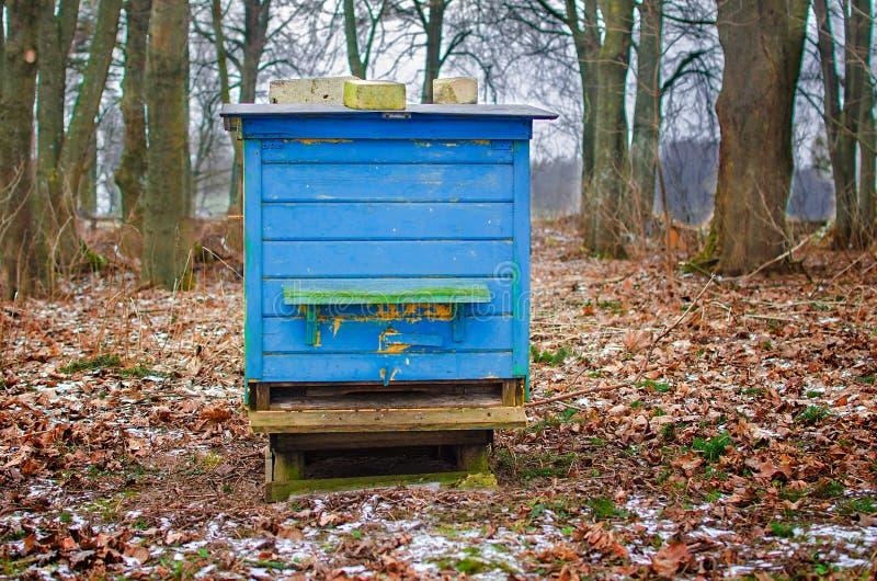 木蜂箱 库存图片