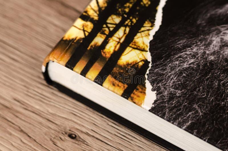 木表面上的书 库存照片