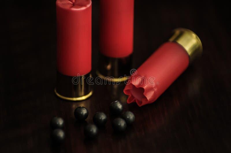 木表面上的红色猎枪弹 库存照片