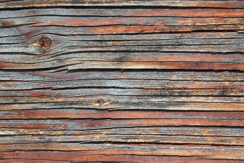 木表面的特写镜头 免版税库存图片