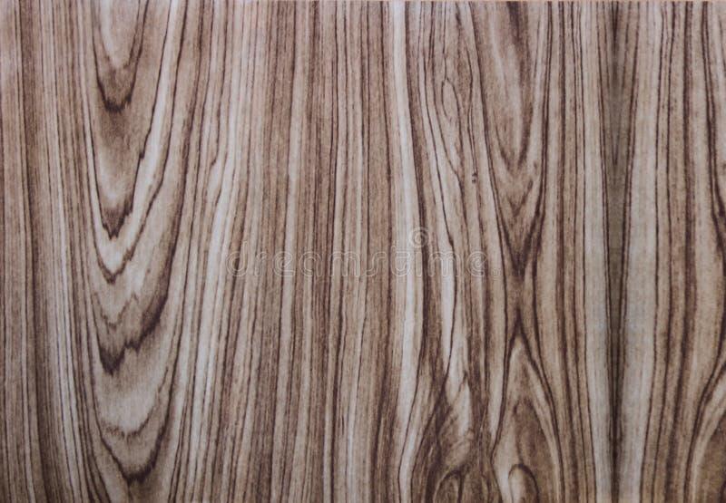 木表面饰板的例子通过被涂上在粗纸板 图库摄影
