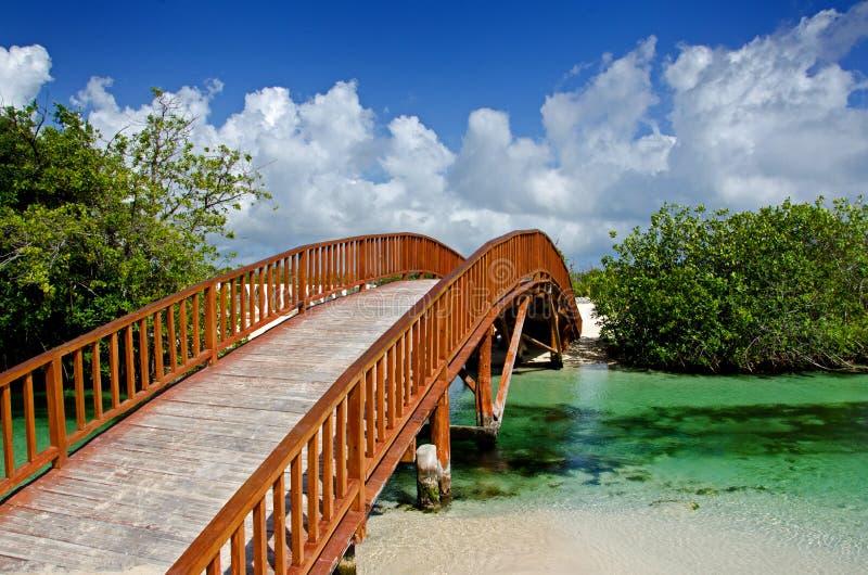 木被成拱形的桥梁 免版税库存照片