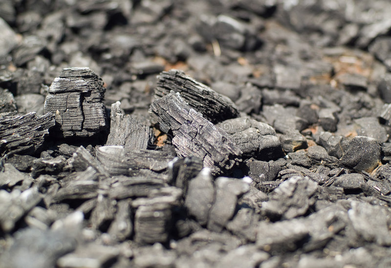 木被烧的木炭 免版税库存图片