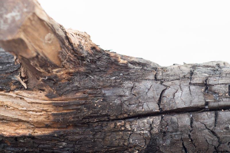木被烧的纹理 库存照片