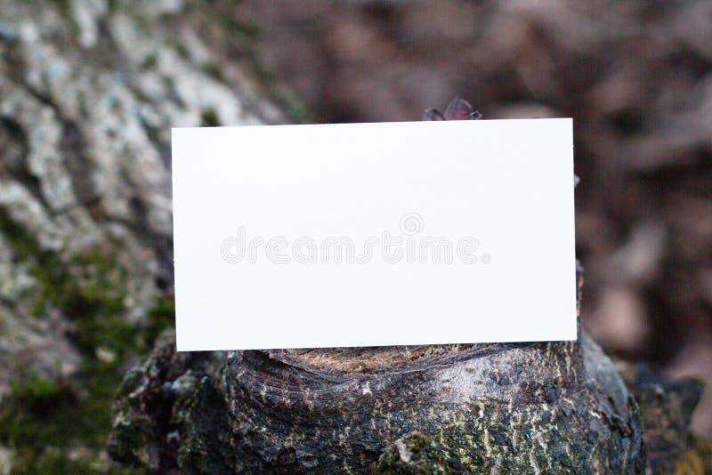 木质背景中空白名片的照片 库存照片