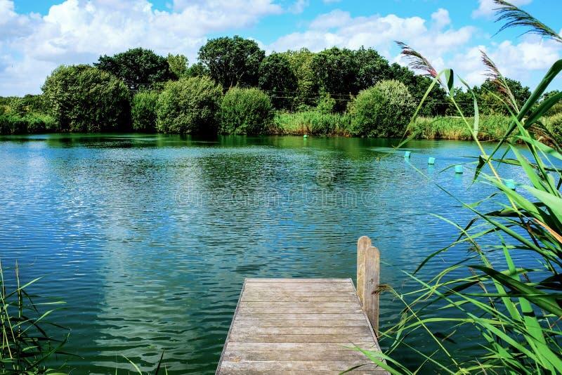 木跳船,突出入有树的一个镇静游泳湖我 免版税库存图片