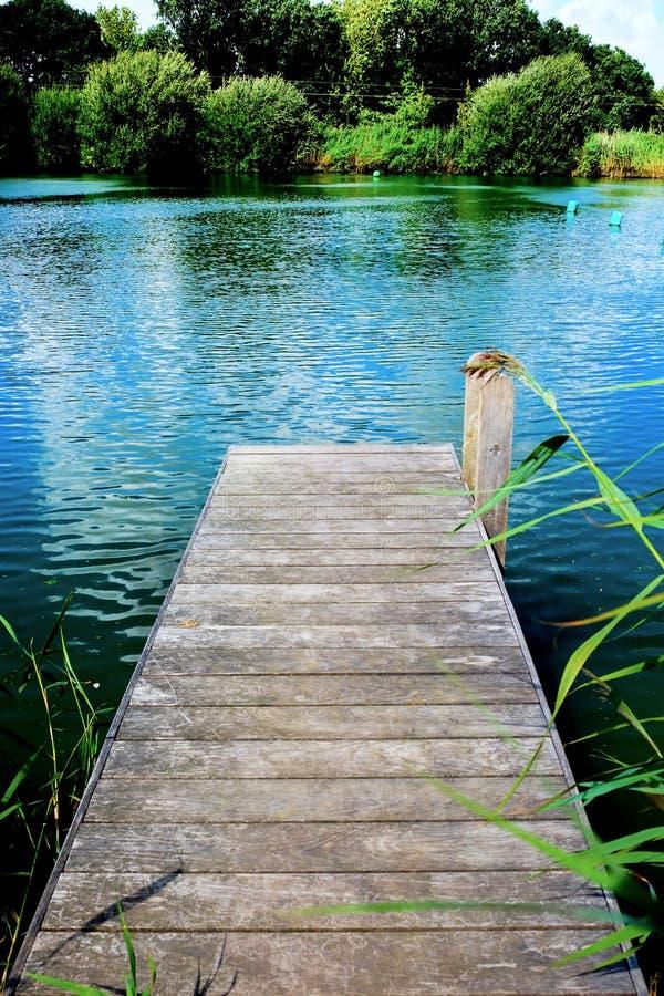 木跳船,突出入有树的一个镇静游泳湖我 免版税库存照片