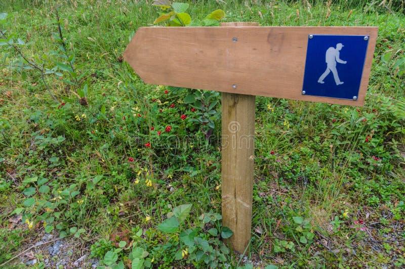木远足的路标在森林区域 库存照片
