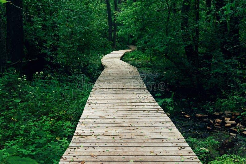 木道路,方式,从板条的轨道在森林公园,透视,定了调子在温暖的口气的图象 库存照片