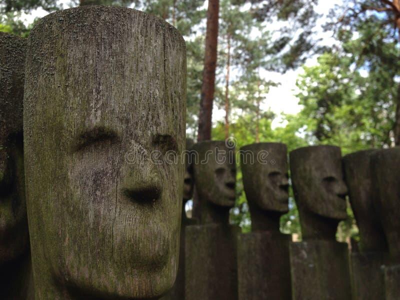 木面孔 库存图片