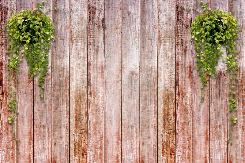 木面板背景 图库摄影