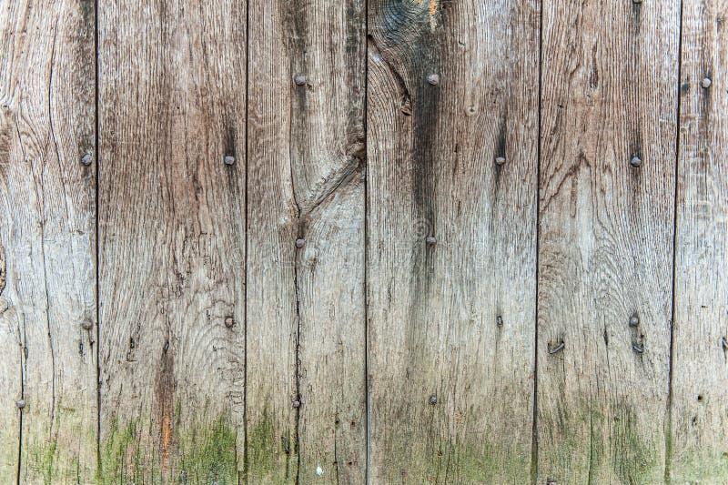 木黑暗的纹理 库存照片