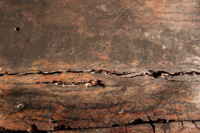 木头木纹理凹线  免版税图库摄影