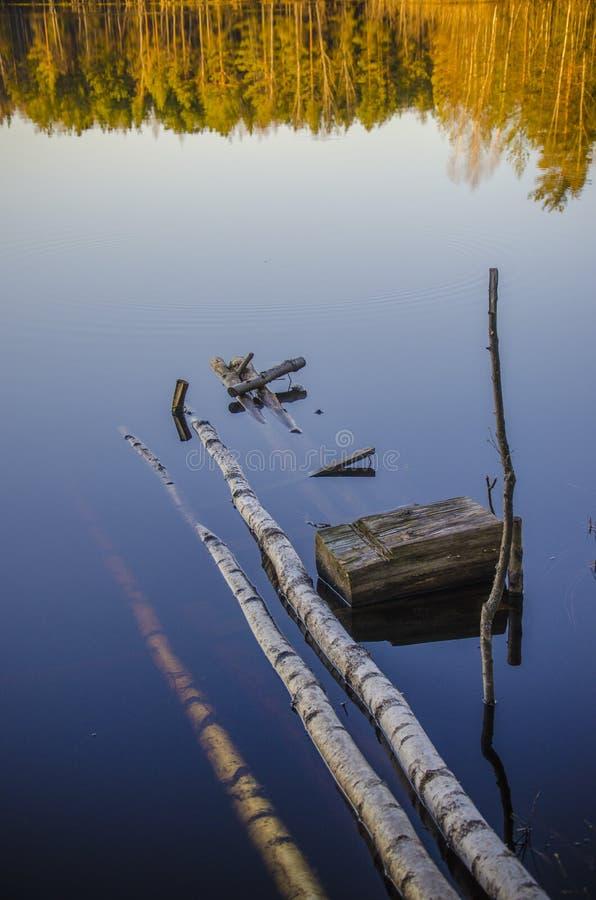 木头的湖 库存照片