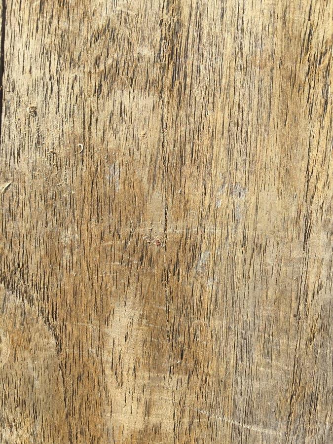 木头的纹理 库存照片
