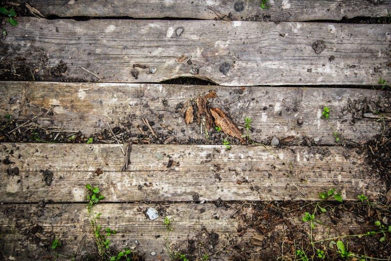 木破裂的日志材料 免版税库存图片