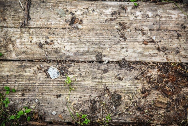 木破裂的日志材料 免版税库存照片