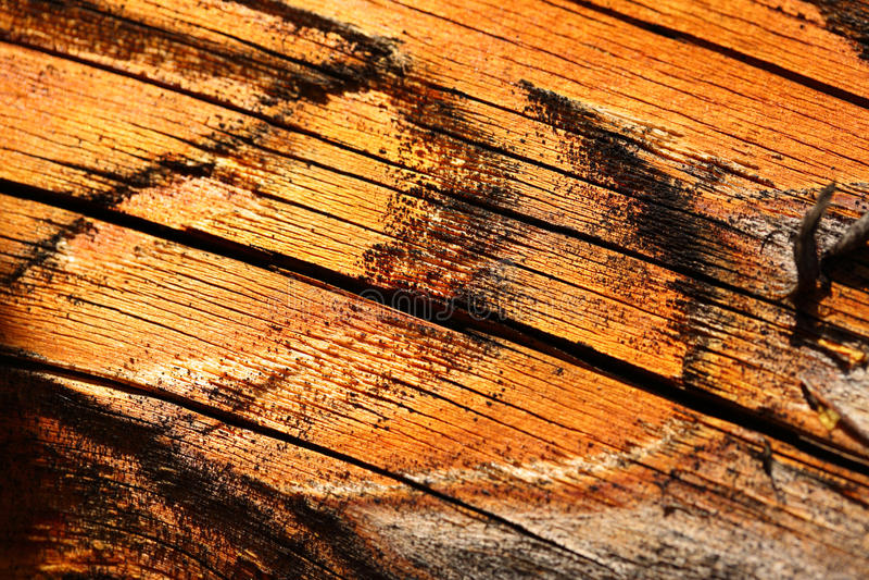 木破裂的织地不很细材料 免版税库存照片