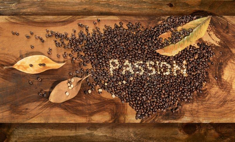 未加工和敬酒的咖啡豆的心脏与木兰干燥叶子的  库存照片