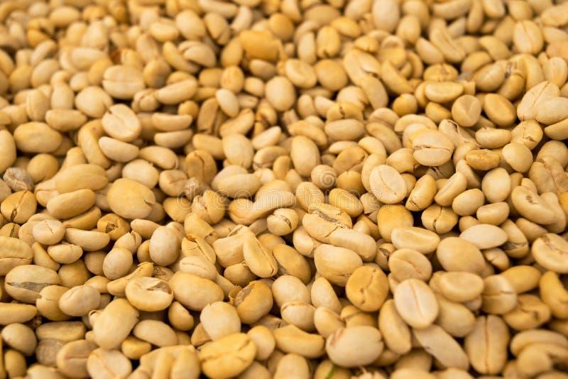 未加工的咖啡豆(没烤)提取背景纹理 图库摄影