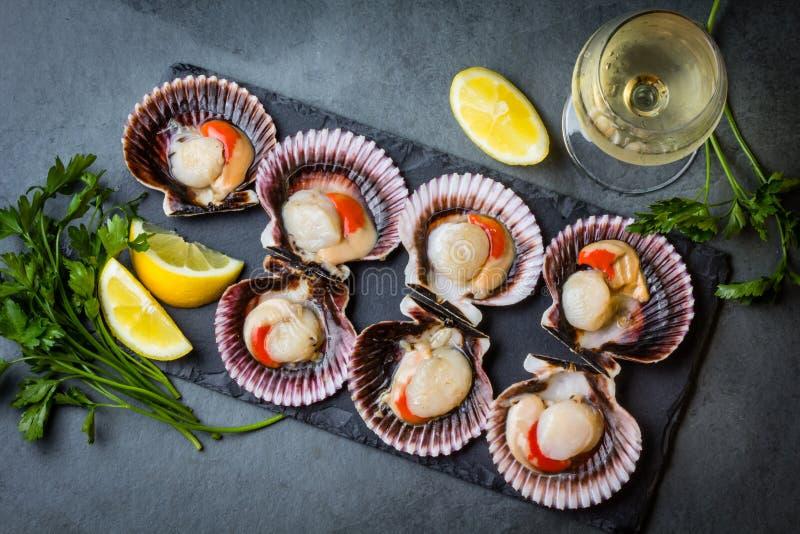 未加工的扇贝用柠檬,在板岩板材,白葡萄酒的香菜 库存图片