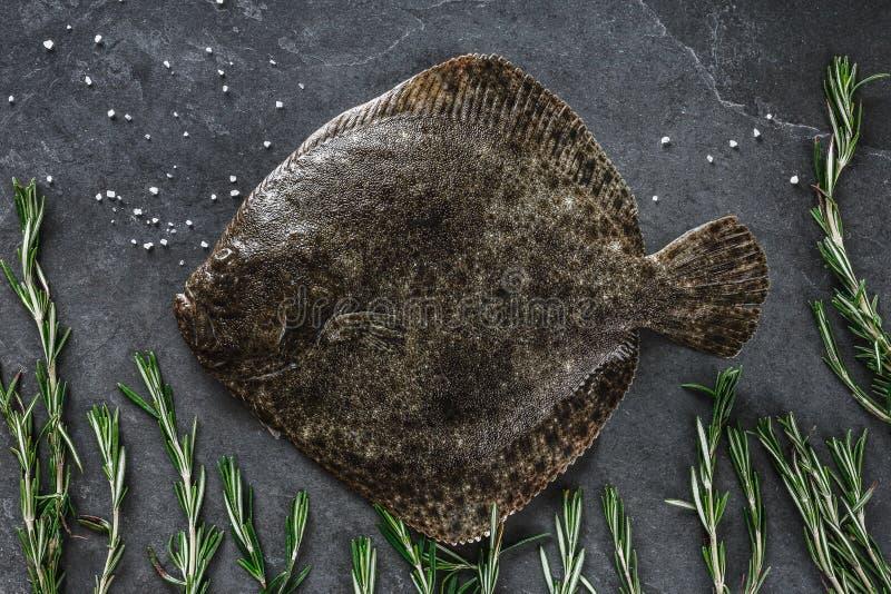 未加工的整个比目鱼鱼用在黑暗的石背景的迷迭香 图库摄影