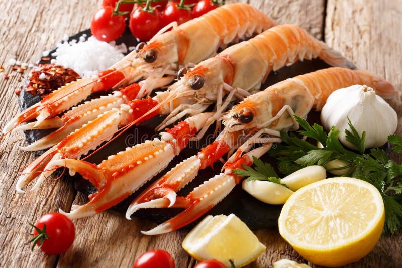 未加工的新鲜的海螯虾norvegicus,蝉虾,都伯林海湾大虾, 免版税图库摄影