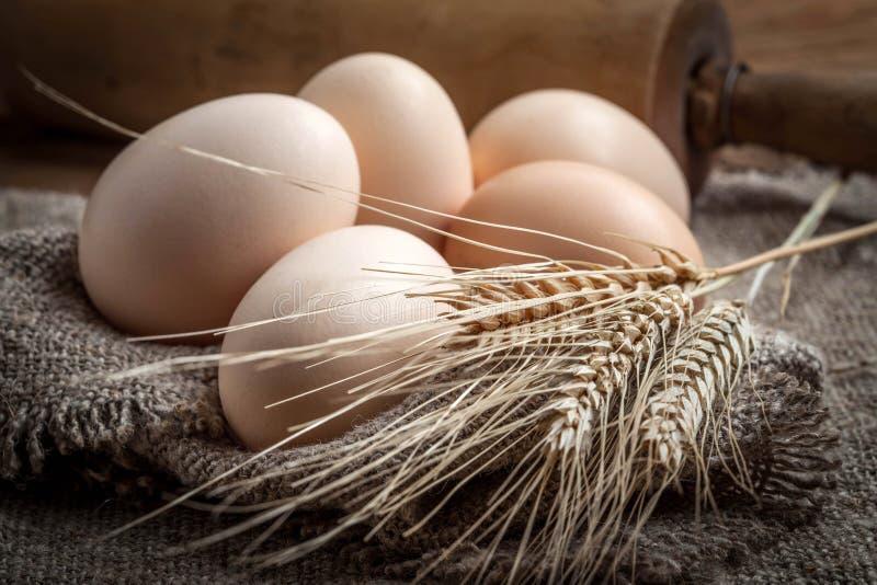 未加工的有机农厂鸡蛋 免版税图库摄影
