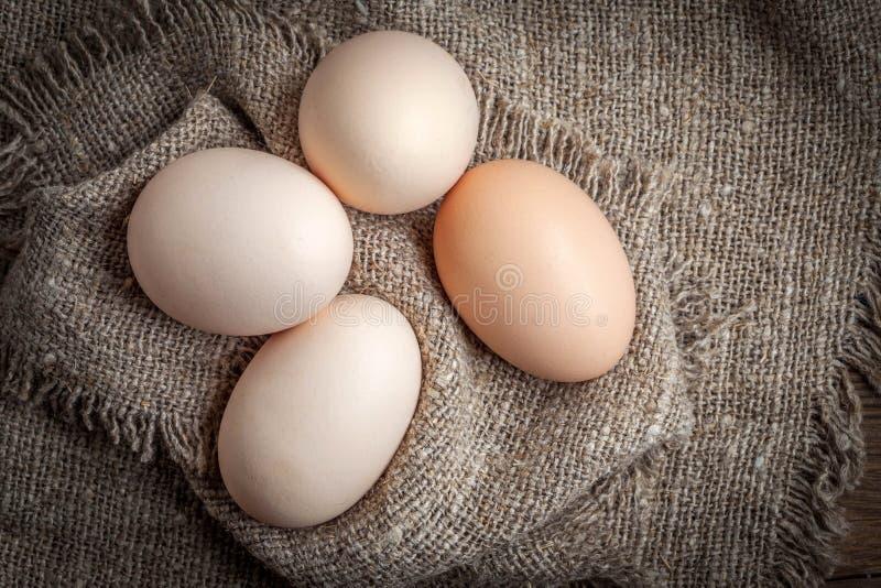 未加工的有机农厂鸡蛋 库存照片