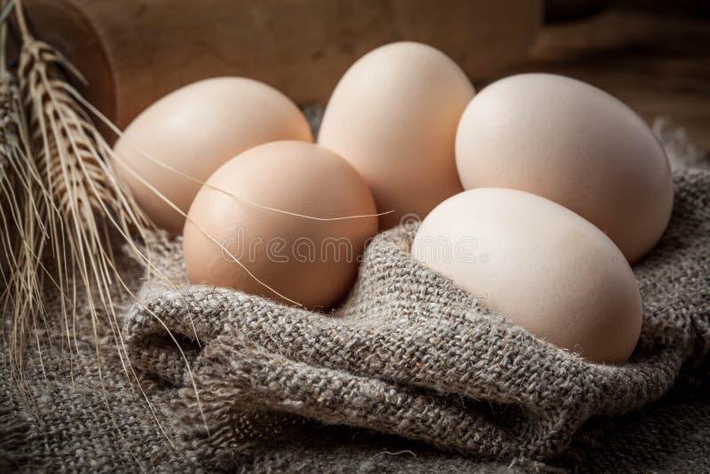 未加工的有机农厂鸡蛋 图库摄影