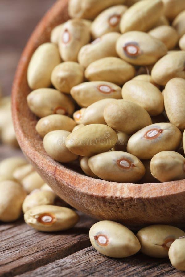 未加工的淡黄的扁豆宏观在匙子垂直 库存照片