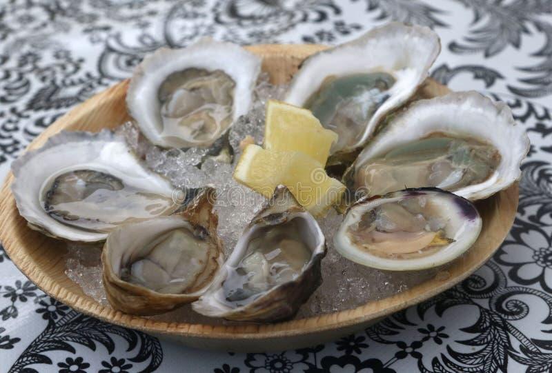 未加工的牡蛎和小帘蛤蜊用柠檬 免版税图库摄影