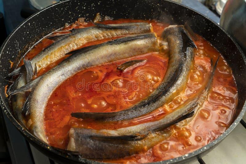 未加工的狭鳕鱼在有西红柿酱特写镜头的平底深锅被烹调 库存图片