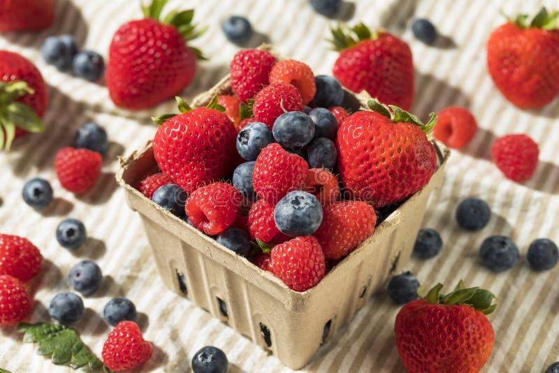 未加工的红色有机混杂的莓果 免版税库存照片