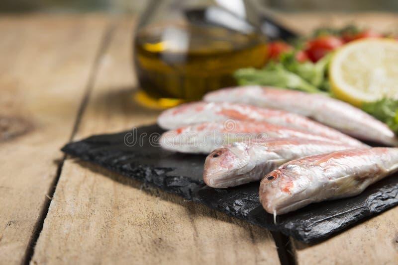 未加工的红鲻鱼在板岩板材的卷曲沙拉服务 免版税库存图片