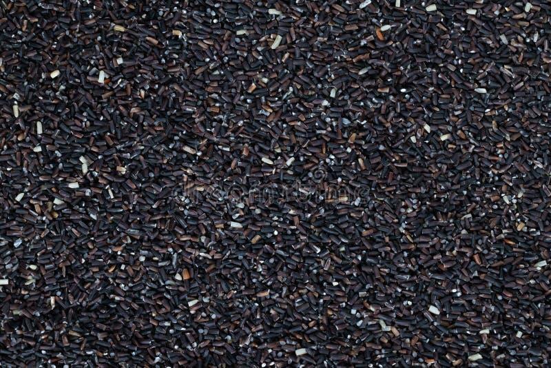 未加工的茉莉花糙米缺一不可的未煮过的堆的关闭驱散了 免版税图库摄影