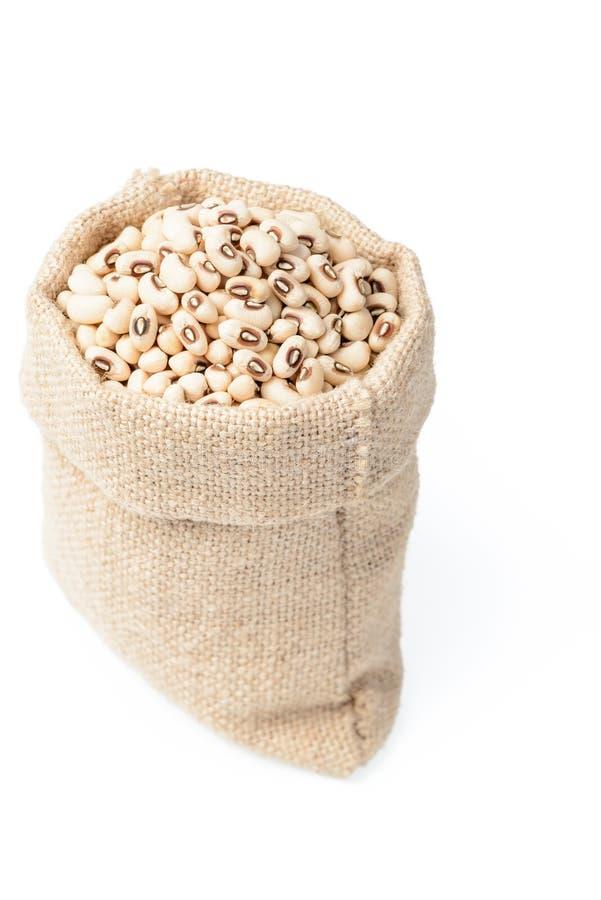 未加工的豇豆豆 免版税库存照片