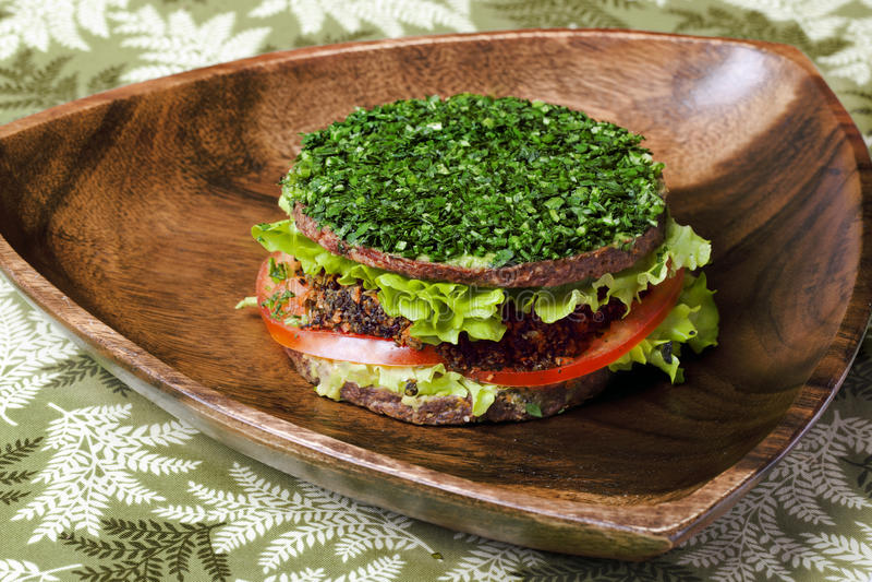未加工的食物汉堡 免版税库存照片