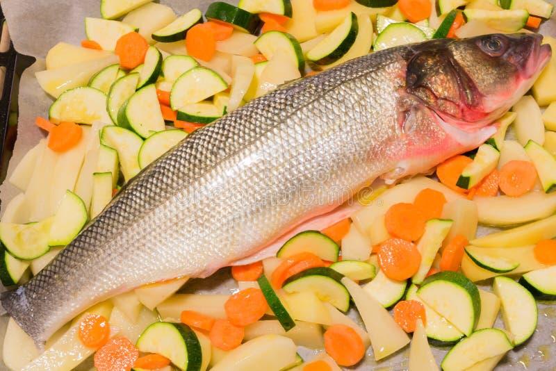 未加工的鲈鱼鱼用切的土豆、红萝卜和夏南瓜 免版税库存图片