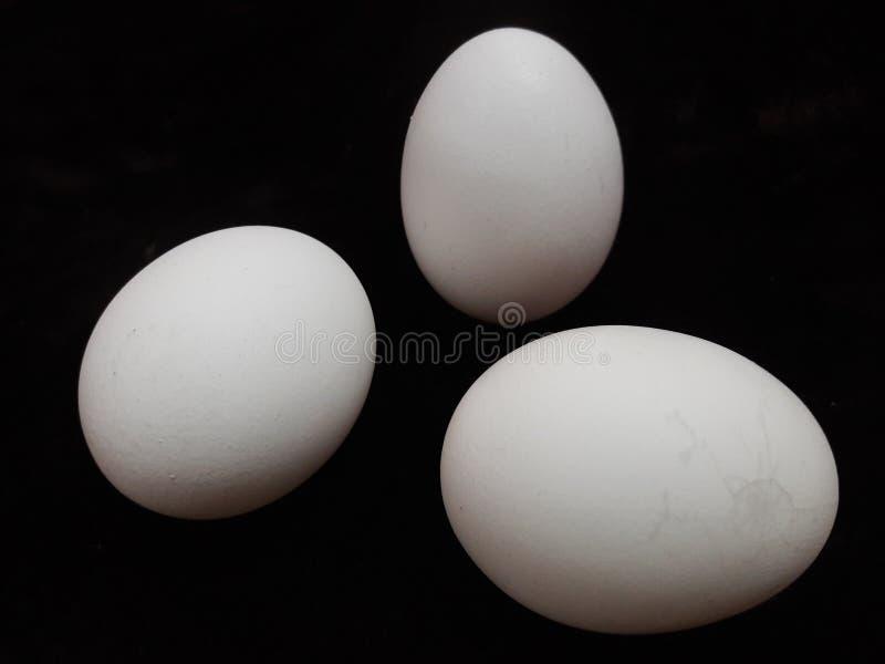 未加工的鸡蛋健康食品 免版税库存图片
