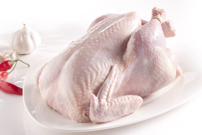 未加工的鸡 免版税库存照片