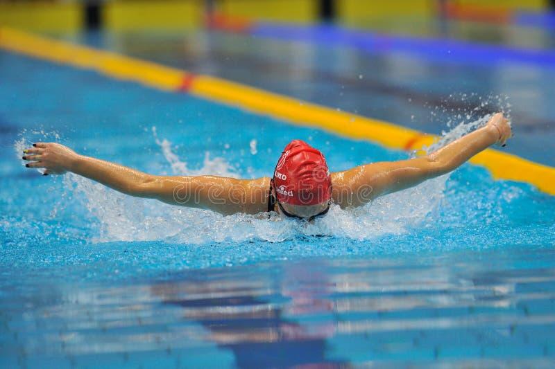 未知游泳者竞争 免版税库存图片