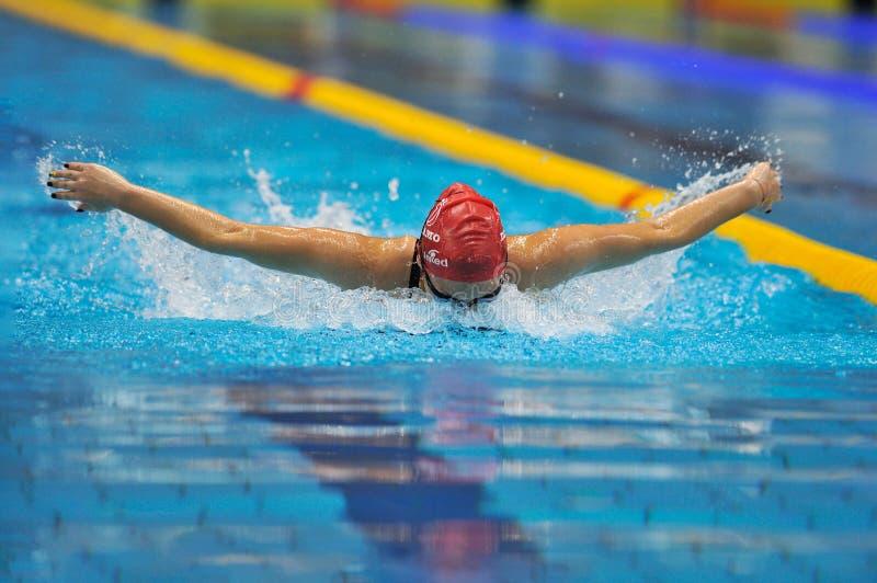 未知游泳者竞争 免版税图库摄影