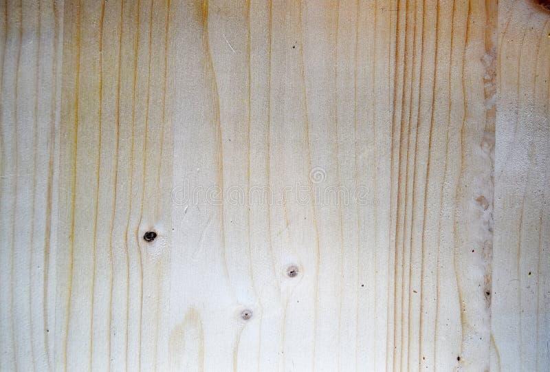 未经治疗未加工的被打结的槭树的木头 免版税库存图片
