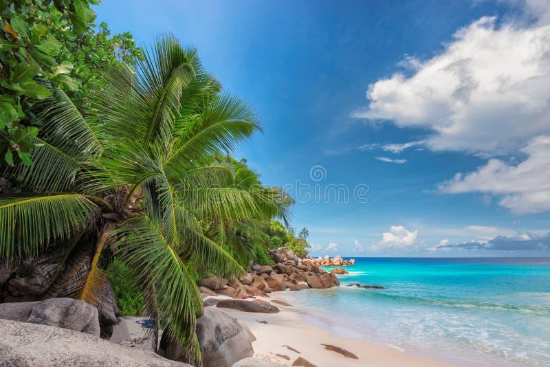 未触动过的热带海滩在塞舌尔群岛 免版税库存照片