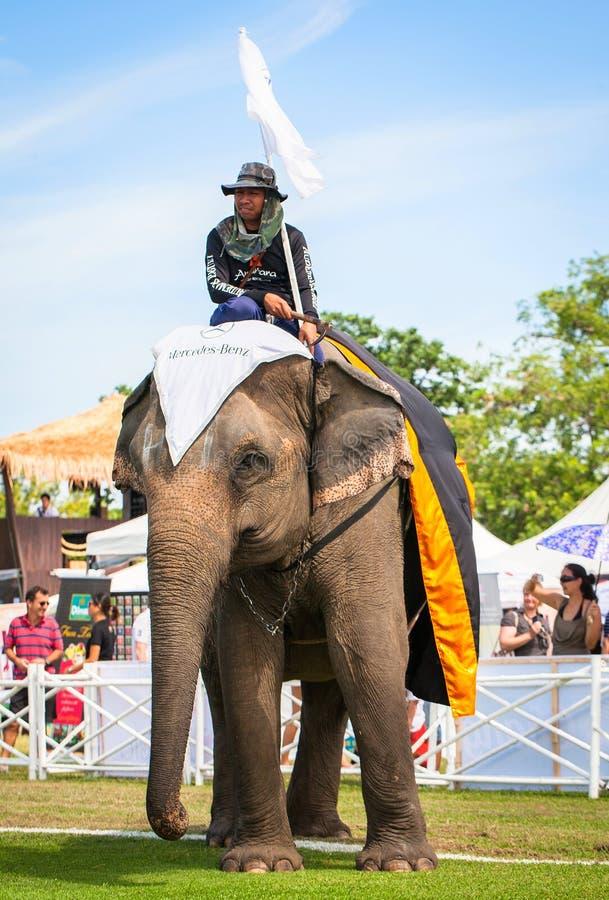 未认出的mahout 大象在2013年泰王杯大象马球比赛期间的马球比赛2013年8月28日在Suriyothai阵营 免版税库存图片