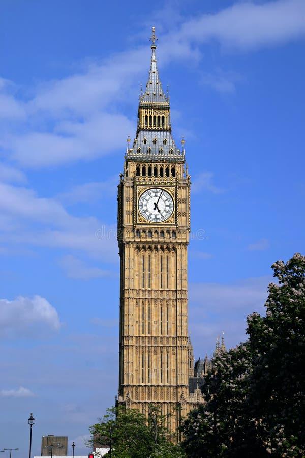 本大英国伦敦纵向 免版税图库摄影