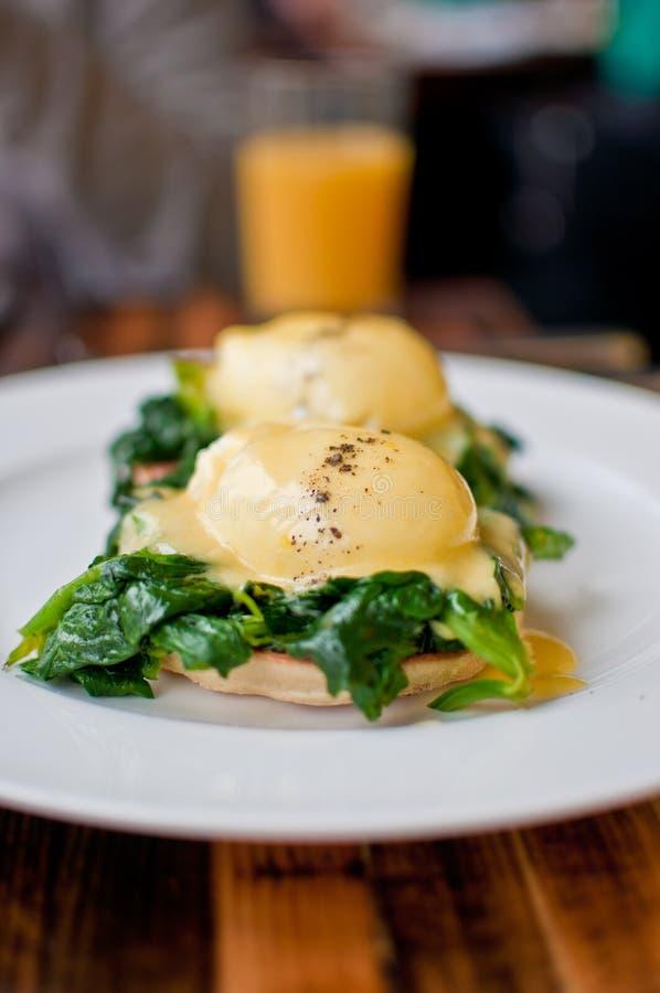 本尼迪克特早餐鸡蛋 免版税库存图片