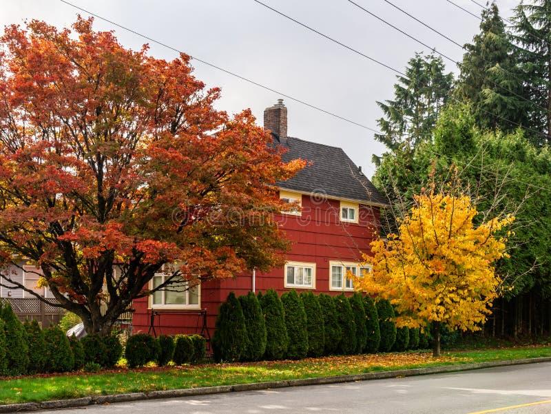 本那比,加拿大- 2018年10月24日:议院在与黄色和红色树的住宅区在秋天 库存图片